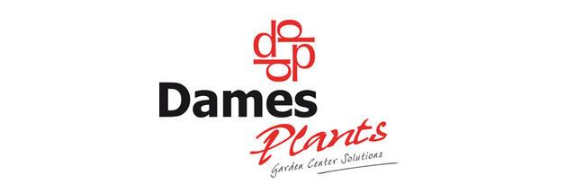 Dames Plants werkt met MoreApp